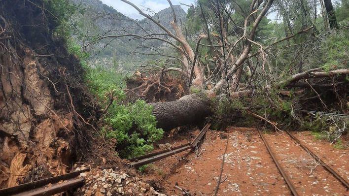 Suspendido el servicio del tren de Sóller a causa de los daños del temporal