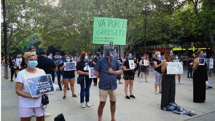 Concentración en Manacor en protesta por la brutal muerte de 'Grisito'