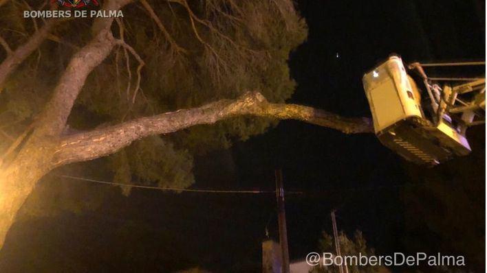 El fuerte viento provoca más de 200 incidentes en Baleares