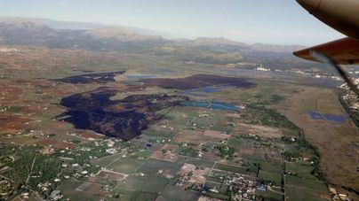 El incendio de s'Albufera arrasó 438 hectáreas y afectó al 25 por ciento del parque natural