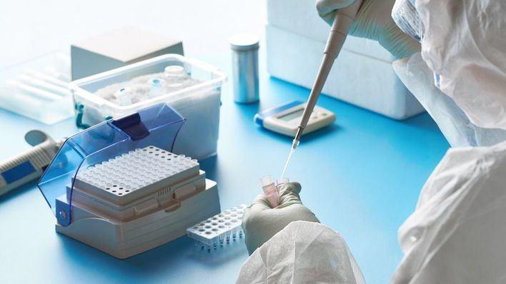 La UIB asocia la mortalidad por Covid a la falta de hierro, zinc y vitaminas D, C y B12