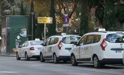 Palma reducirá hasta 290 el número de taxis que circularán por Ciutat