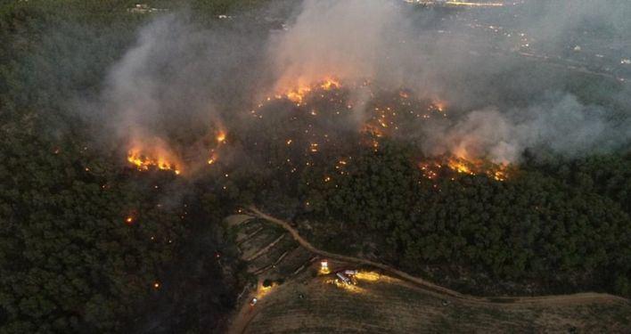 El incendio de Puig d'en Botja en Ibiza quema cinco hectáreas de sotomonte y pinar