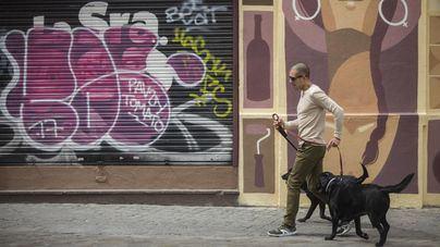 Los veterinarios aconsejan limpiar las patas de los perros como prevención frente a la Covid