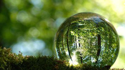 Un total de 19 empresas españolas figuran en el índice de referencia mundial de sostenibilidad