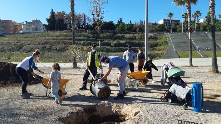 Un total de 18 familias participan en Palma en la primera siembra de árboles abierta a la ciudanía