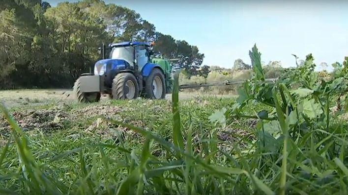 El PP denuncia que el sector agrario balear desconoce el contenido del nuevo modelo PAC y como le afectará