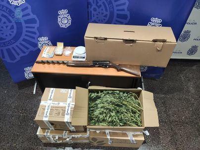 Cuatro detenidos tras la incautación de 600 plantas de marihuana en el Coll d'en Rabassa