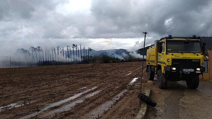 Sa Pobla, escenario del primer incendio del año en Mallorca