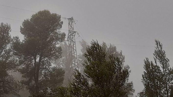 Endesa identifica en Baleares 25 puntos de la red afectados por la borrasca 'Hortense'