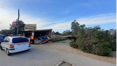 El temporal deja más de 450 incidencias en las Islas