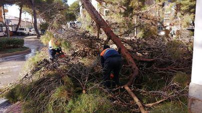 'Hortense' dejó huella en Felanitx, con carreteras y caminos cortados