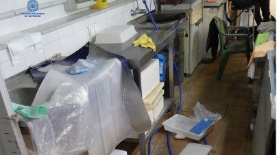 Detenido tras asaltar una tienda en Maó y llevarse botellas de alcohol