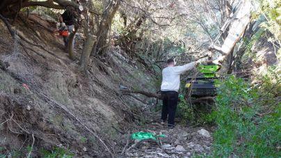 Marratxí limpia 600 metros del torrente de Coanegra