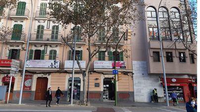 Cort mejora la situación de una quincena de puntos de luz en ocho calles de Palma