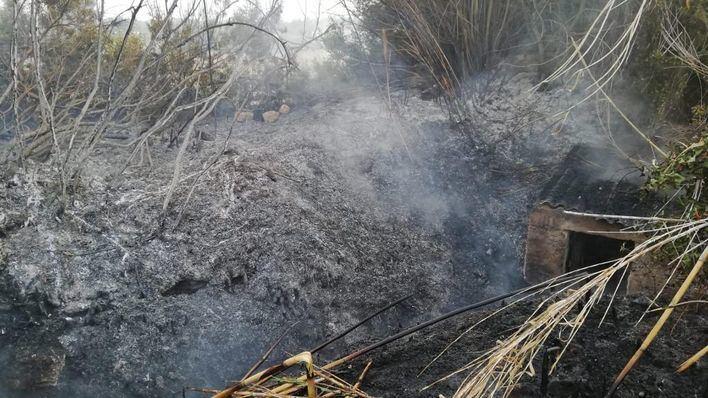Los bomberos actúan en un incendio forestal de nivel 0 declarado en Ibiza