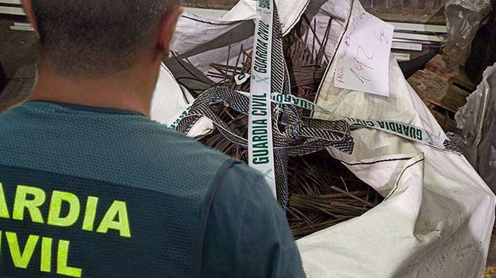 Saqueo sin precedentes en fincas agrícolas de Mallorca: roban 450 kilos de cable eléctrico