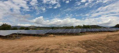 Amics de la Terra rechaza el parque fotovoltaico de Bunyola que elimina 700 árboles