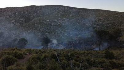Extinguido un incendio forestal en Andratx que ha quemado media hectárea de vegetación