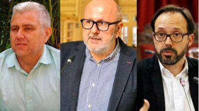 El Pi y Més celebran el aval del Consultiu al recurso al TC por el REB