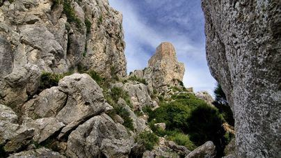 El Consell organiza 40 actividades para celebrar los diez años de la Serra como patrimonio de la Unesco