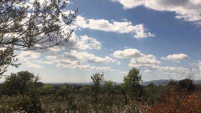 Temperaturas estables y cielos poco nubosos en Baleares