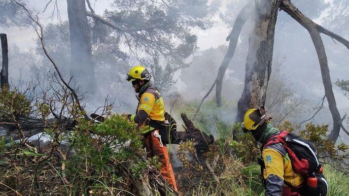 Un incendio forestal en Aucanada calcina una superficie de 1,5 hectáreas de pinar