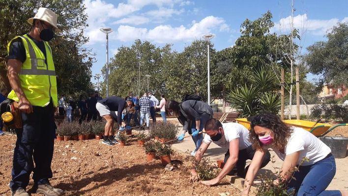 Siembra de plantas arbustivas en Palma para celebrar el Día de Europa