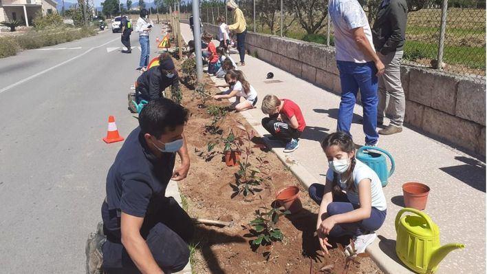 Alumnos del CEIP Sant Jordi siembran plantas arbustivas y árboles en el paseo de Sant Jordi
