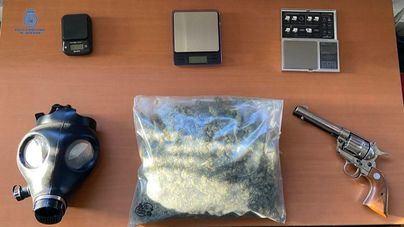 Detenido con medio kilo de marihuana y 250 plantas