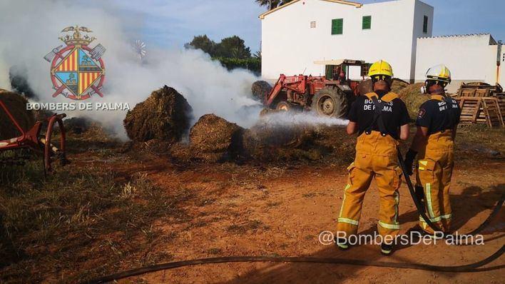 Los Bomberos de Palma controlan un incendio en una finca agrícola del Pla de Sant Jordi