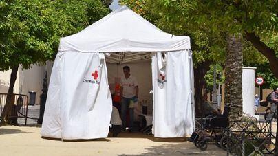 Cruz Roja Baleares ayudó a conseguir empleo a 258 personas en 2020