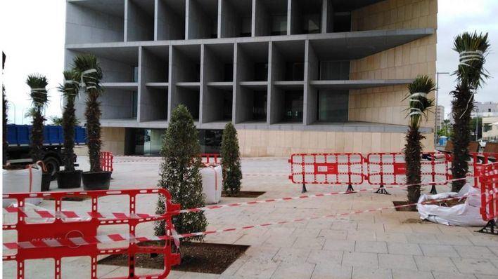 Cort planta 18 árboles en el entorno del Palau de Congressos