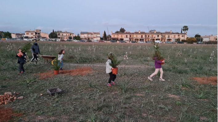 Armengol pedirá a AENA que no construya el parque solar en Son Bonet