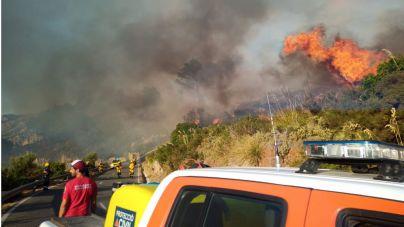 Dan por controlado el incendio del Coll de Sa Gramola tras quemar 6,38 hectáreas