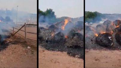 Incendio en una finca hípica de Andratx