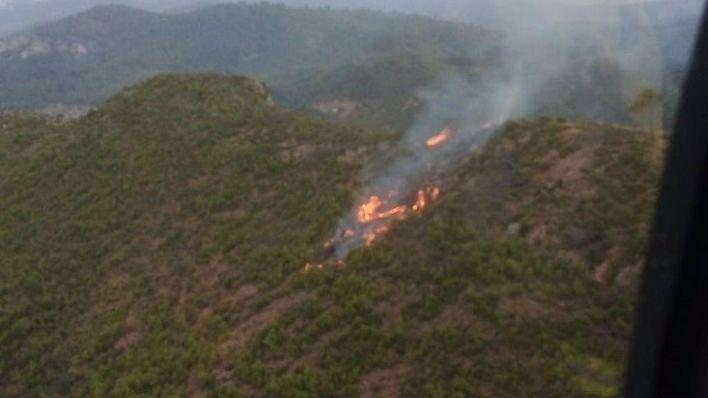 Extinguido el incendio forestal de sa Coma, en Andratx, tras calcinar 0,26 hectáreas de pinar