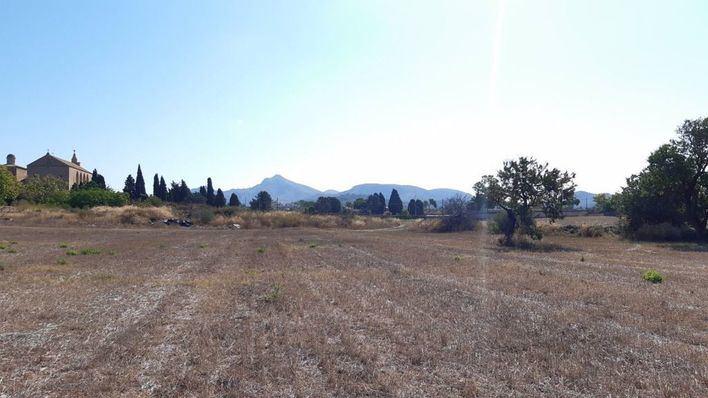 La compra de los terrenos de sa Tanca permitirá ampliar el área arqueológica de Pollentia, en Alcúdia