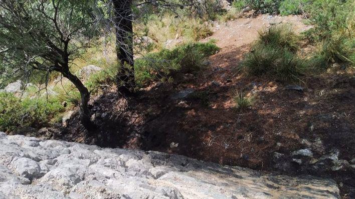Investigan las causas de tres pequeños incendios declarados en Valldemossa
