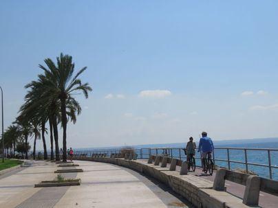 Temperaturas en descenso y viento fuerte en el norte de Mallorca