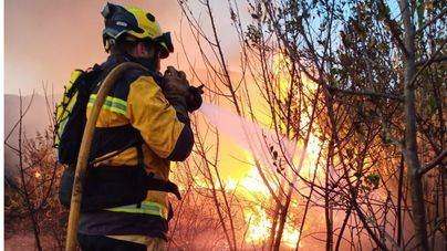 Extinguido el incendio forestal declarado en Sa Pobla