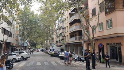 El PP de Palma exige a Cort justificación de la tala de árboles de Nuredduna