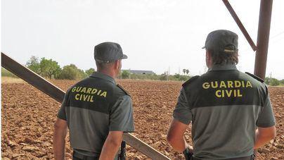 Baleares registró 105 denuncias por robo en explotaciones agrícolas en 2020