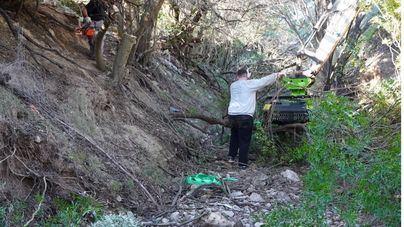 Marratxí limpiará dos kilómetros del Torrent de Coanegra para mejorar la evacuación del agua