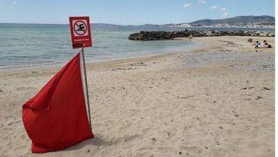 Cerradas al baño las playas de Can Pere Antoni, Ciudad Jardín y Cala Major por vertidos fecales