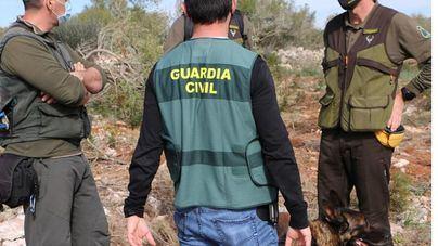 Investigan a un hombre por deforestar un terreno protegido y causar la muerte a varias tortugas