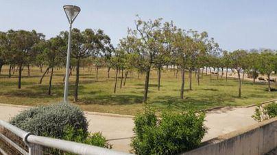 Cs Palma propone convertir el parque de Son Parera en un parque de convivencia canina