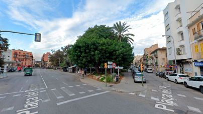 Santa Catalina: Cort limitará nuevas licencias de restaurantes y prohibirá el tráfico en plaza Progreso
