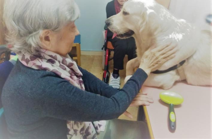 Terapia con perros para mejorar el bienestar de los usuarios de la residencia de Calvià