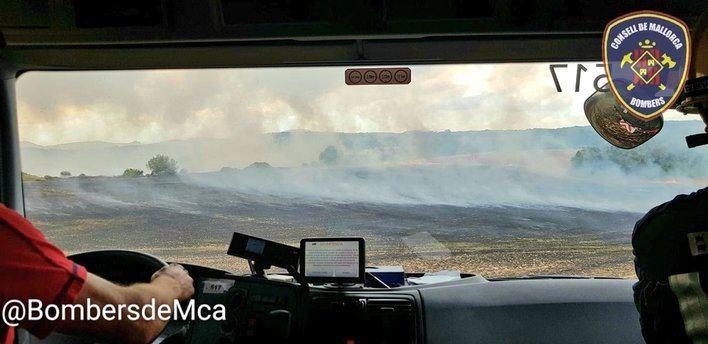 Declarados 3 incendios en apenas media hora en Algaida, Santa María y Muro